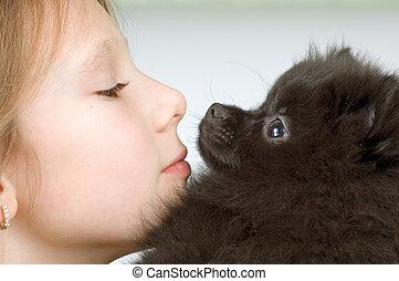 spitz-dog, 소녀, 강아지