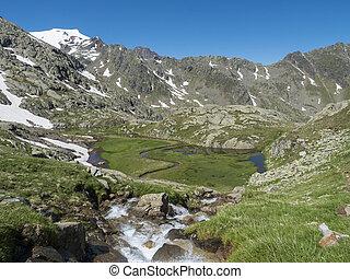 stubai, 지나치게 수식적인, 시내, 티롤, 여름, 정상, 오스트리아, 폭포, 녹색, 눈, wetland, 알프스 산맥, 아름다운, peaks., paradies, 풀, 산, 하이킹, 보이는 상태, 야생의, 목초지, 모자를 씌우는, 은 불렀다, 활강의, 길게 나부끼다